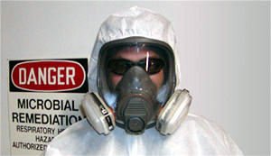 Due diligence is needed when hiring a Mold Contractor